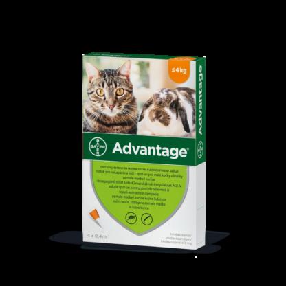 Advantage oldat macskáknak S 1x0,4ml