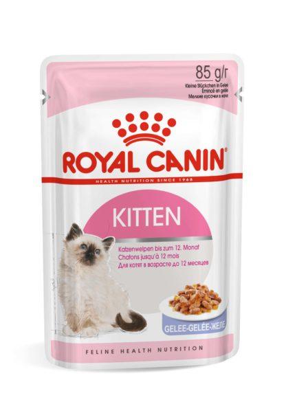 Royal Canin Feline Health Nutrition macska tasak Kitten jelly 12x85g